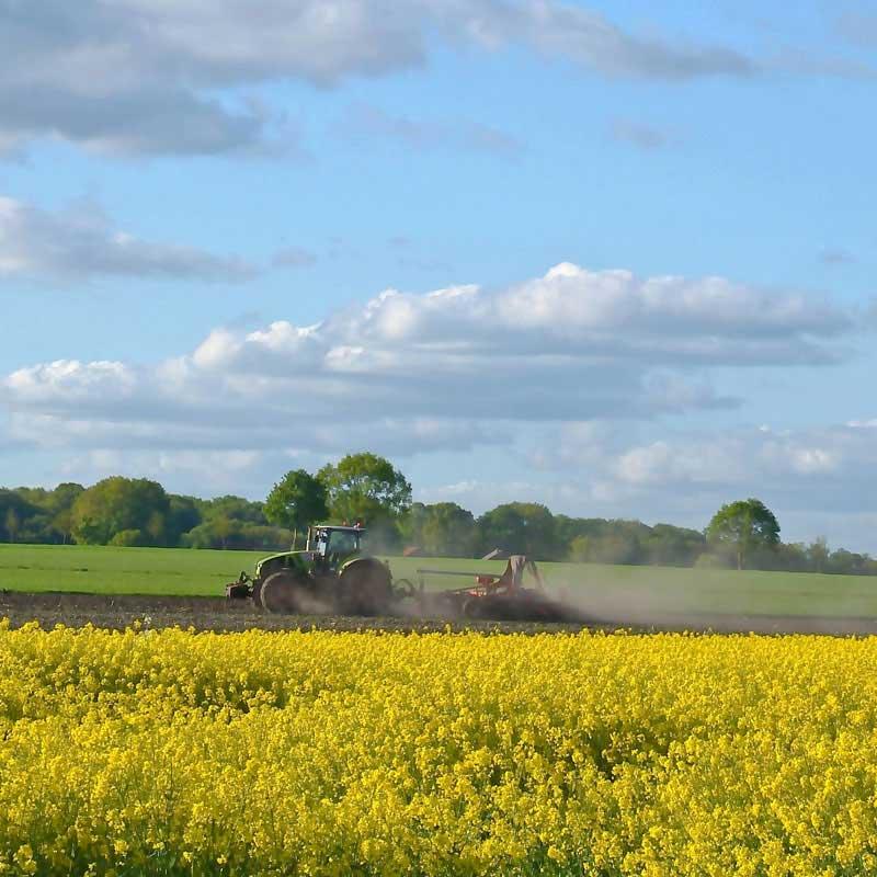 Kapfhof - Landwirtschaft, Feldbearbeitung