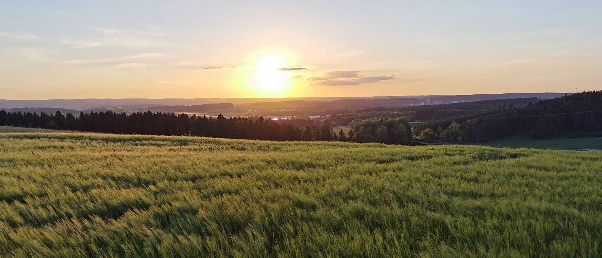 Wiesen und Felder rund um den KapfHof, Bad Dürrheim