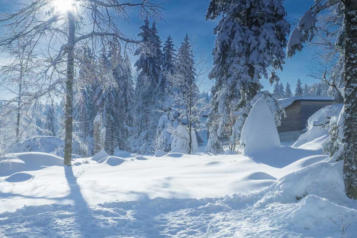 Verschneite Winterlandschaft - ideal für eine kleine Winterwanderung